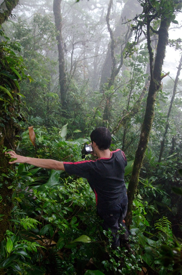 Daniel looking for orchids at Tenorio - 1100 meters